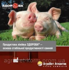 БМВД СовПрот Прегна 10% Агроветатлантик ТМ Здорова,  25кг