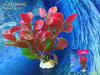"""Растение """"Aplant"""" - 10см, Е 22"""