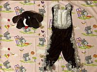 Карнавальный костюм Собака велюр