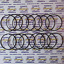 Ремкомплект уплотнительных колец гильзы двигателя ЗИЛ-130, фото 3