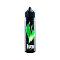 FTMN Burn Apple - 60 мл. VG/PG 70/30