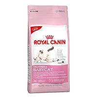 Royal Canin Mother and Babycat 400 г - корм для котят и беременных/кормящих кошек