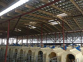 Будівництво,ремонт та реконструкція ферм ВРХ,свиноферм.пром будов а