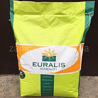 Семена кукурузы, Евралис, ЕС Сенсор, ФАО 370