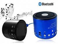Портативная колонка с радио и Bluetooth WS-Q9
