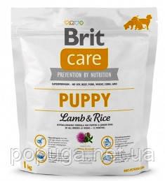 Корм Brit Care Puppy Lamb с ягненком и рисом для щенков и молодых собак всех пород, 12 кг