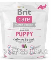 Корм Brit Care Grain-free Puppy Salmon с лососем для щенков и молодых собак всех пород, 3 кг