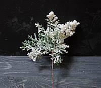 Ветка туи в снегу мал, фото 1