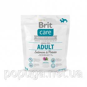 Корм Brit Care Grain-free Adult Salmon & Potato с лососем для взрослых собак мелких и средних пород, 1 кг