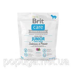 Корм Brit Care Grain Free Junior Large Breed Salmon & Potato с лососем для молодых собак крупных пород, 1 кг