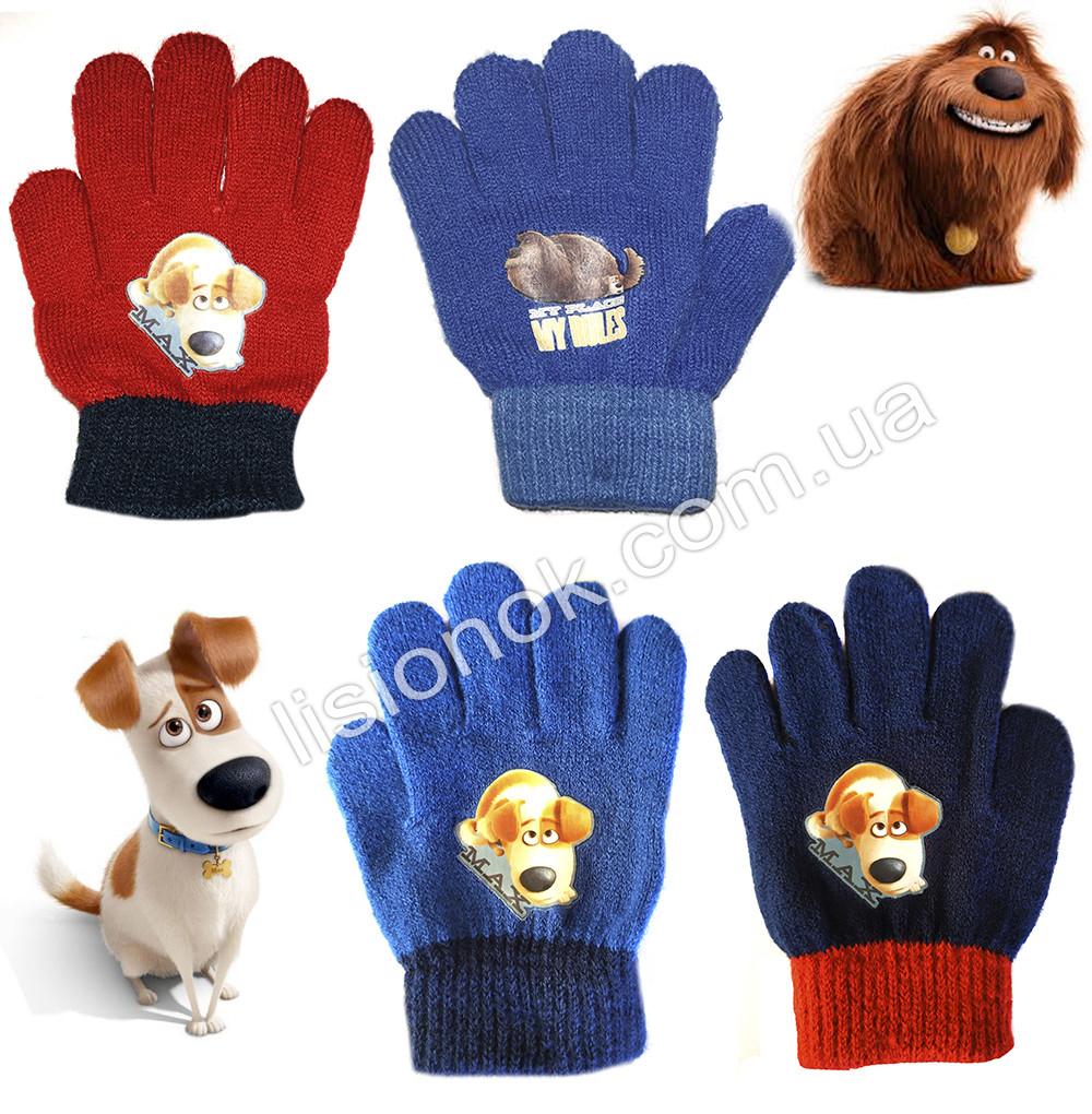 Демисезонные перчатки Тайная жизнь домашних животных от Illumination 2-4 года