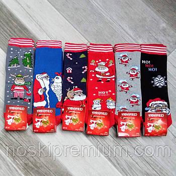 Носки детские махровые бамбук Новый год Ceburaska, Турция, на 5-6 лет, ассорти, 02601