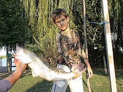 Батник детский камуфляж Дубок, фото 2