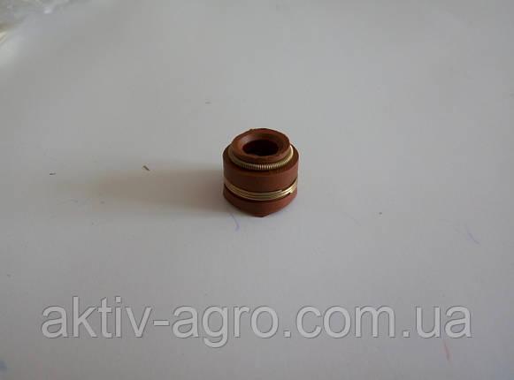 Сальник клапана Д-240, фото 2