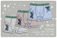 Трусики-боксеры для мальчика. ТР 27