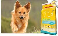 Josera Festival (Йозера Фестиваль) корм для взрослых привередливых собак 15 кг