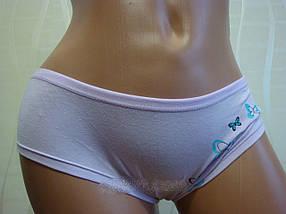 Женские трусики 44-48 размер (197), фото 3