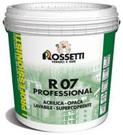 СУПЕРМАТОВАЯ акриловая краска для внутренних работ R07 PROFESSIONAL 1 л