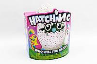 Hatchimals Интерактивный питомец Пингви в яйце Хетчималс TOY015
