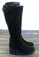 Зимние замшевые сапоги черные на каблуке Anna Lucci