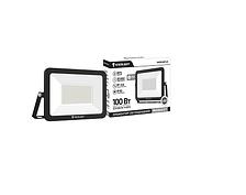 Прожектор світлодіодний Enerlight Mangust 100Вт 6500K