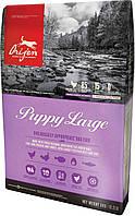 Orijen Puppy Large (Ориджен Паппи Лардж) - сухий корм для цуценят великих порід 11,4 кг