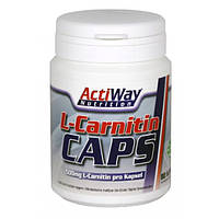 ActiWay Nutrition L-Carnitine, 80 caps