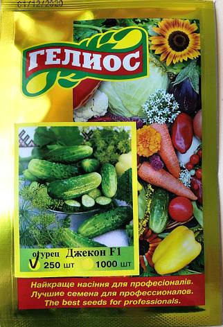 Семена огурцов пчелоопыляемых Джекон F1 250 шт., фото 2