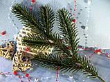 Ветвь еловая зеленая на 5 лапок от 8 грн от 100 шт, фото 2
