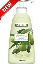 Gallus шампунь 1000 мл Olive NEW