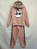 Спортивный костюм детскийдля девочки, 7-11лет, бежевый, фото 1