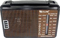 Портативный радио приемник GOLON RX-608ACW (45630/1)
