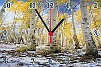 """Настенные часы стеклянные  """"Березы"""" кварцевые, фото 1"""