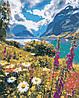 Картина по номерам Лето в горах (AS0386) 40 х 50 см ArtStory