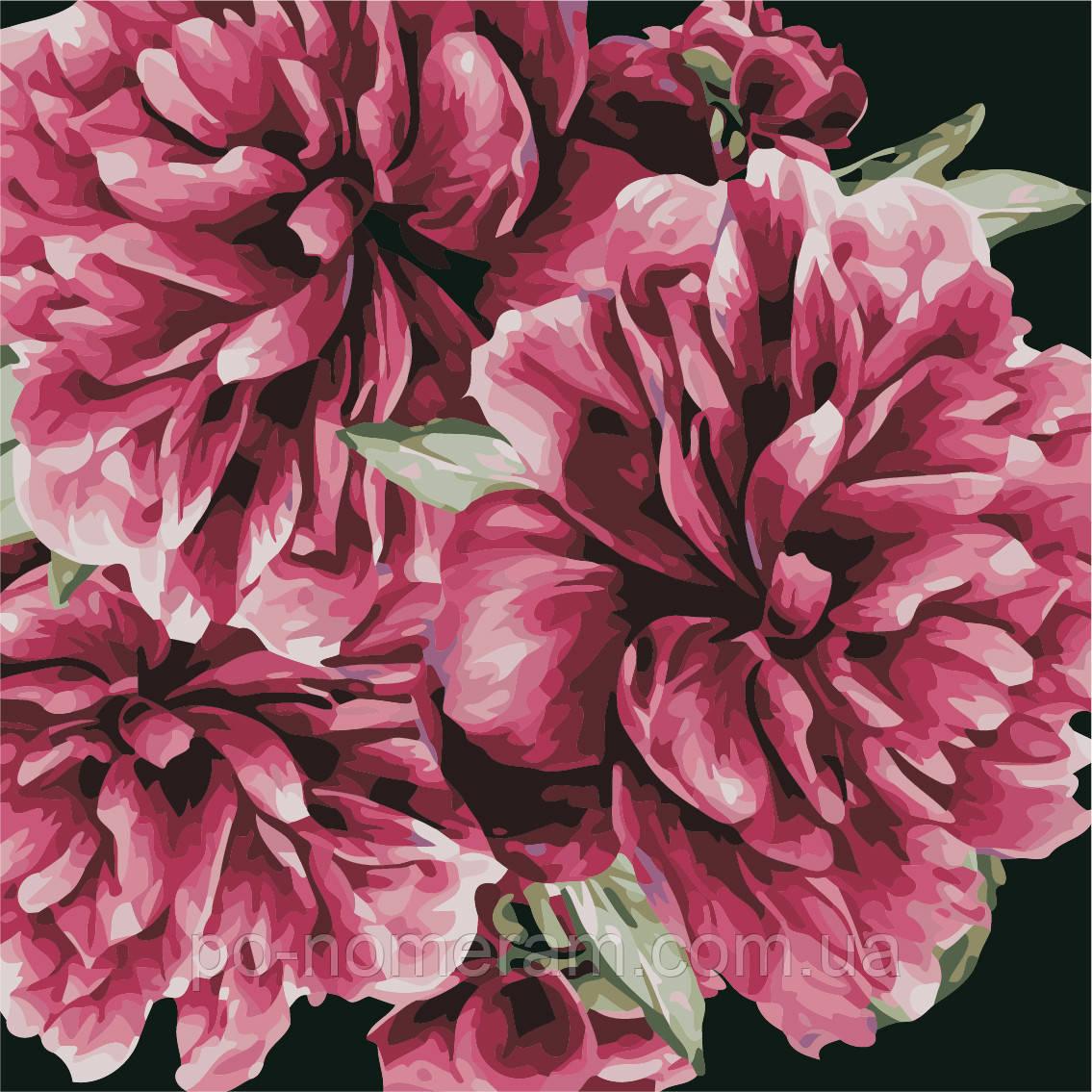 раскраска для взрослых цветы для тебя As0503 40 х 40 см Artstory без коробки купить киев на Po Nomeram