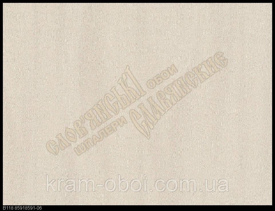 Обои Славянские Обои КФТБ виниловые горячего тиснения шелкография 10м*1,06 9В118 Витас 2 8591-06