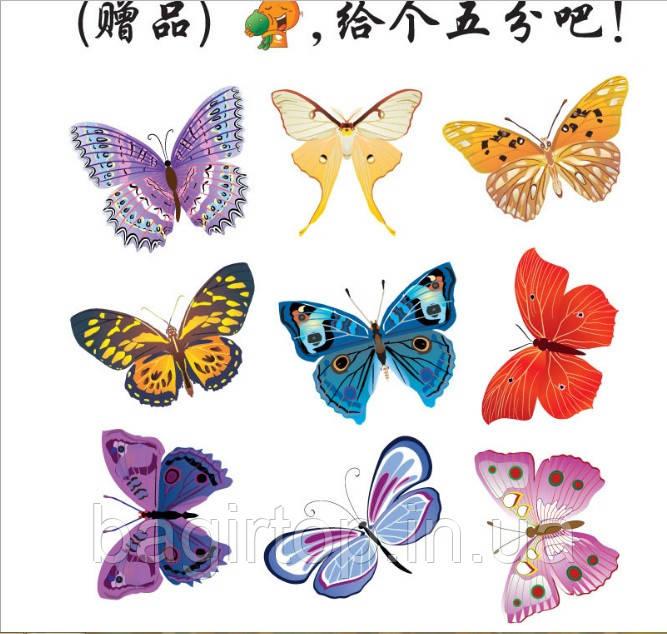 Набор декоративных 3D бабочек  (19х17см)