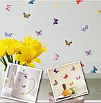 Набор декоративных 3D бабочек  (19х17см), фото 5
