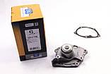 Водяной насос (помпа) Renault Megane 1.9dCi 2002- Saleri SIL, фото 2