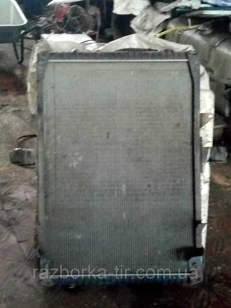 Радиатор Renault Magnum