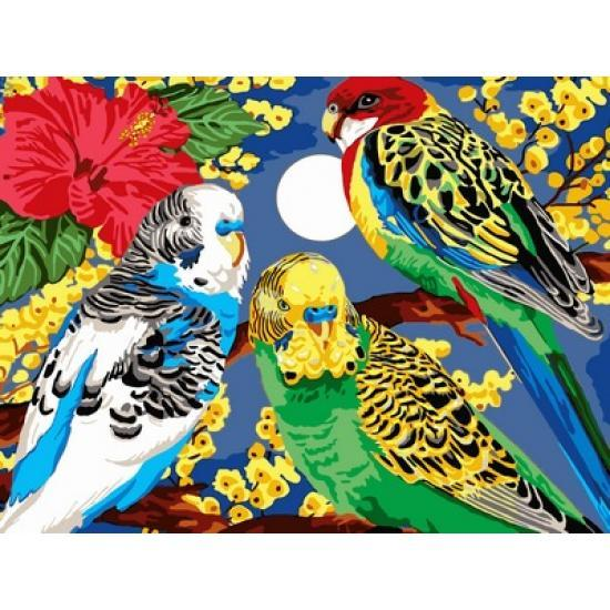 Картина по номерам Попугаи в цветах, 30x40 см., Babylon