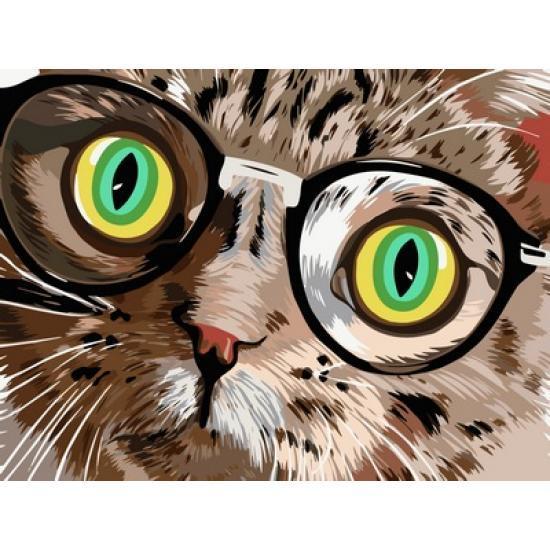 Картина по номерам Кот в очках, 30x40 см., Babylon