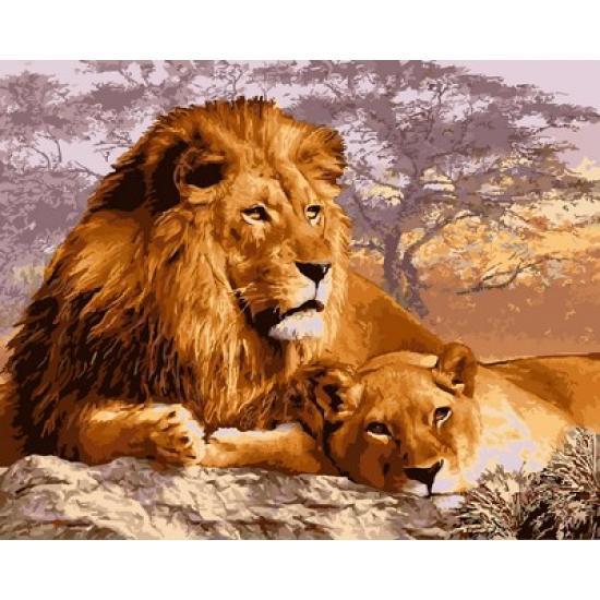 Картина по номерам Кошки на отдыхе, 40x50 см., Babylon