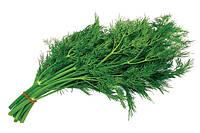 Професійні насіння Кропу і Петрушки