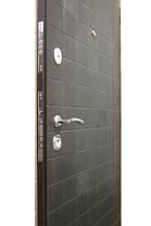 Уличные металлические входные двери Каскад, фото 3