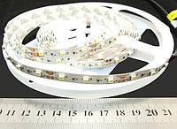 Светодиодная лента 3528-60-IP33-CWd-8-12