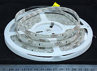 Светодиодная лента 3528-60-IP64-R-8-12