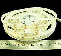 Светодиодная лента 3528-120-IP66-WW-10-12