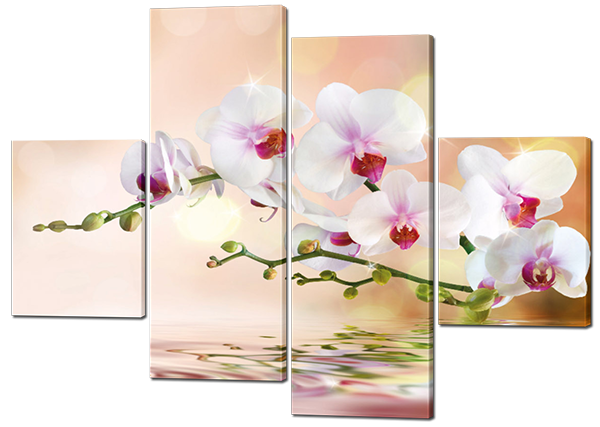 Модульная картина Interno Холст Орхидея на воде 126x93см (R229M)