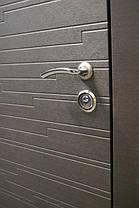Металлические входные двери Акустика в квартиру, фото 2